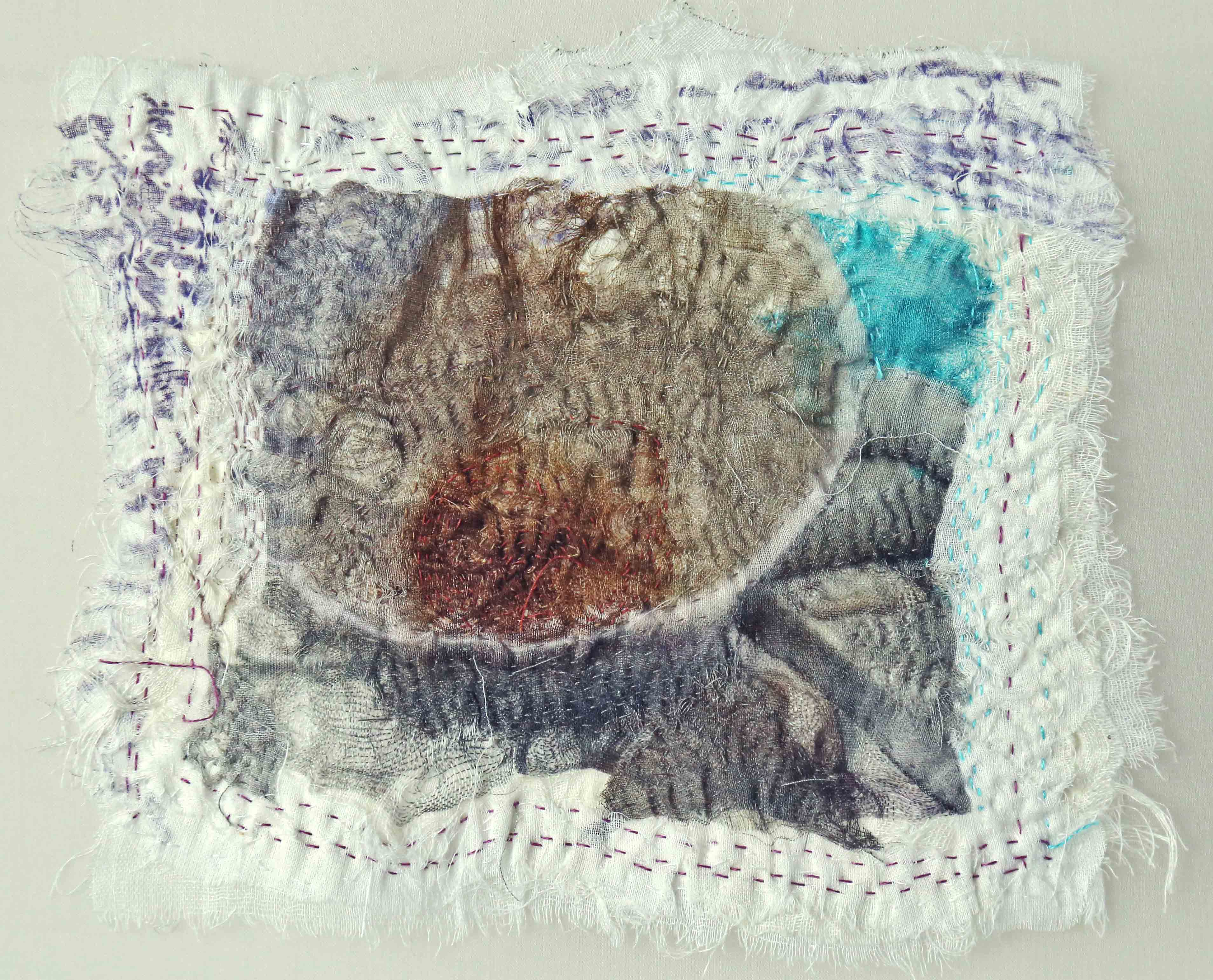 Dregs in Your Tea-cup I, 2010 [6.5 X 7.5 inches - unframed] Materials: cotton voile, cotton floss, cotton-polyester thread, Technique: photography, digital printing, tearing, layering, stitching, embroidery