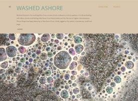 washed_ashore_blog